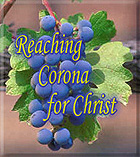 Olive Branch Church