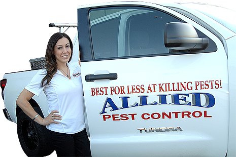 Allied Pest Control Corona CA